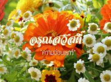 สวัสดีภาพดอกไม้