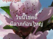 สวัสดีภาพดอกไม้,